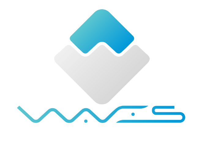 What is Waves Platform?