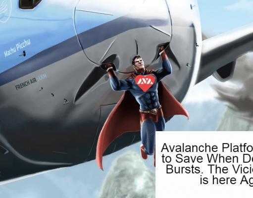Avalanche a hero to save crash