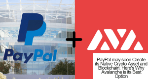 avalanche plus paypal chain