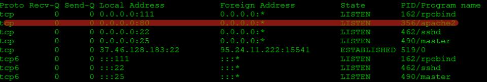 Проверяем прослушиваемые порты ОС Evilginx 2 (4)