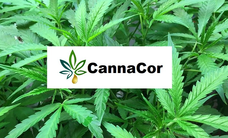 What is CannaCor