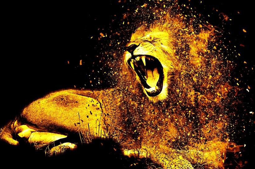 lion-1987846_1920