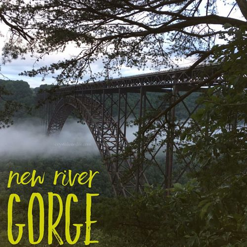 New River Gorge National Park WV hiking