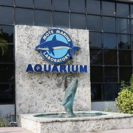 Mote Marine Lab and Aquarium Sarasota, Florid