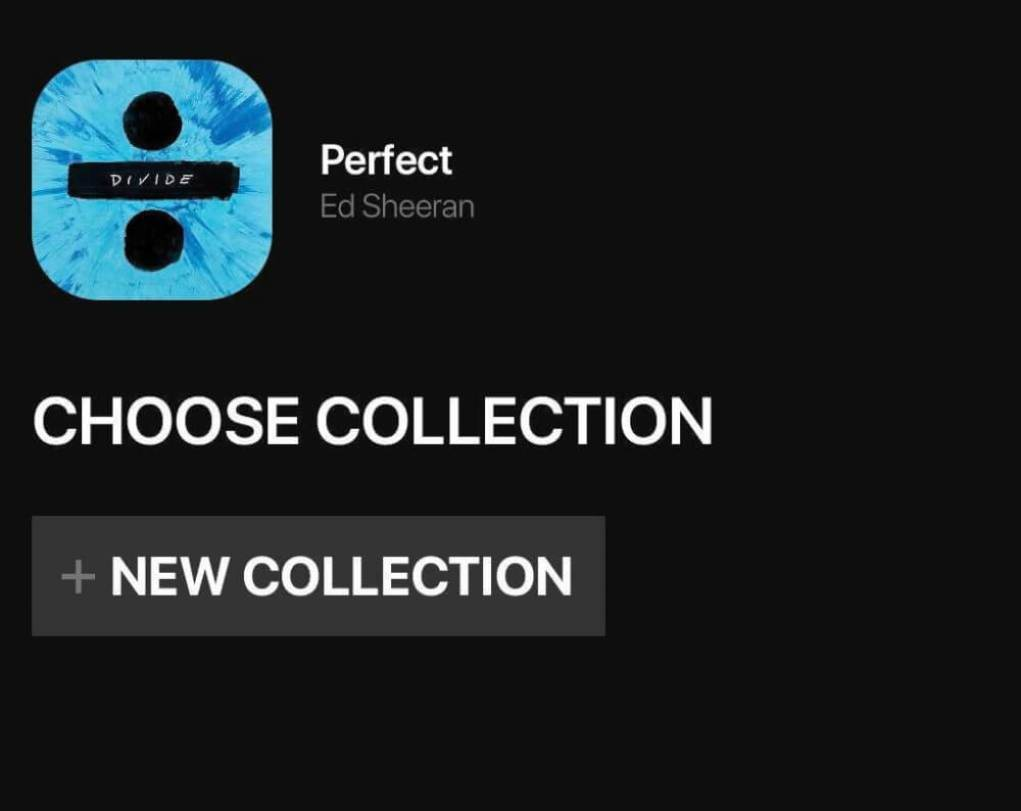 vibbidi music app social media for music collection new collection