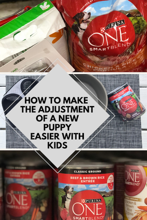 how to make the adjustment of a new puppy easier with kids ad