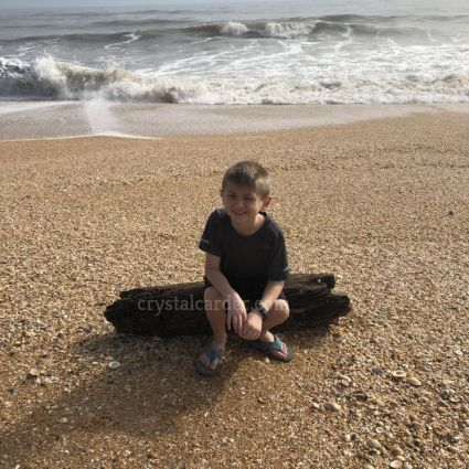 South Ponte Vedra Beach seashell beach