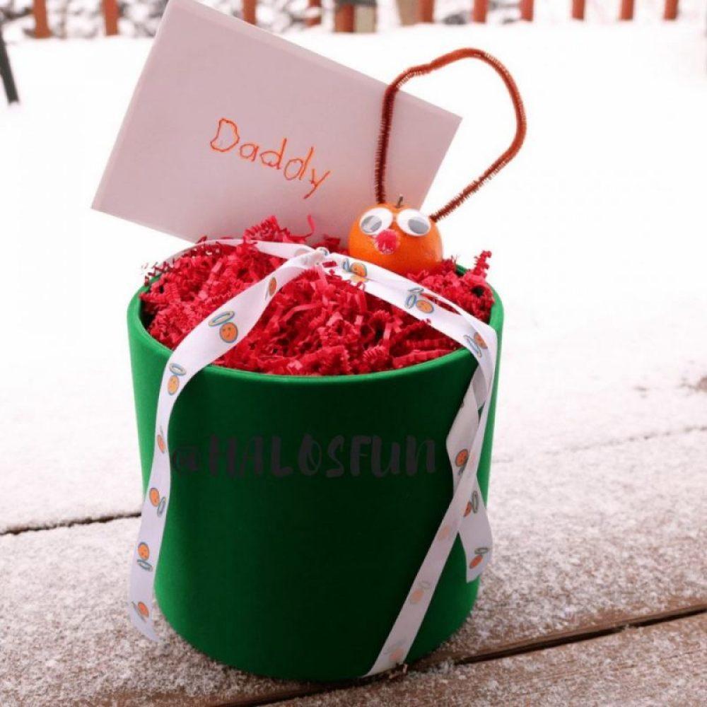Halos fun gift