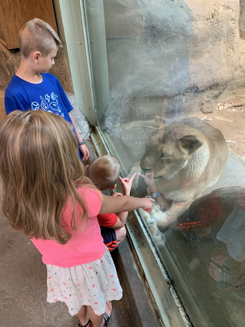 Close Encounters at Erie Zoo