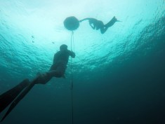 Open water Freediving training