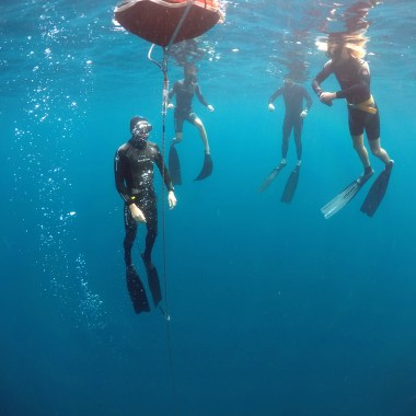 Always Freedive with a buddy