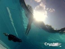 freedivingpool