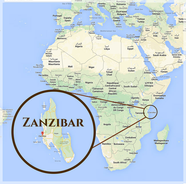 Image result for zanzibar map