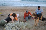 Rima and I were at the Orange House for the season's first sea turtle nest.