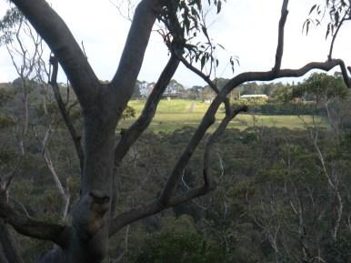 bushbash around legoland 2010 2