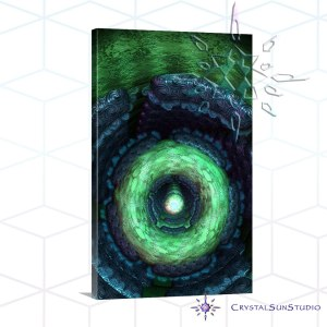 Centered Pentasmula Canvas Art Print