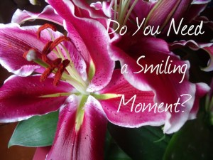 Do You Need a Smiling Moment?