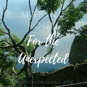 Making Room for the Unexpected – {Fresh Market Friday Link-Up}