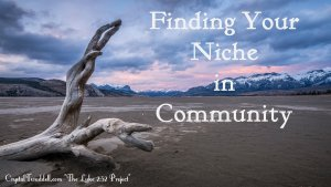 Finding Your Niche in Community
