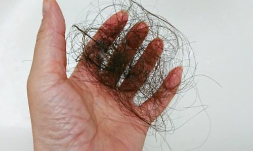 日興ビューティ 黒麗シャンプーで毛が抜ける