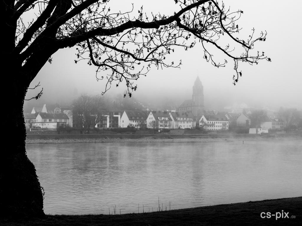 Rhein im Nebel, kontrastreich, mit interessantem Vordergrund