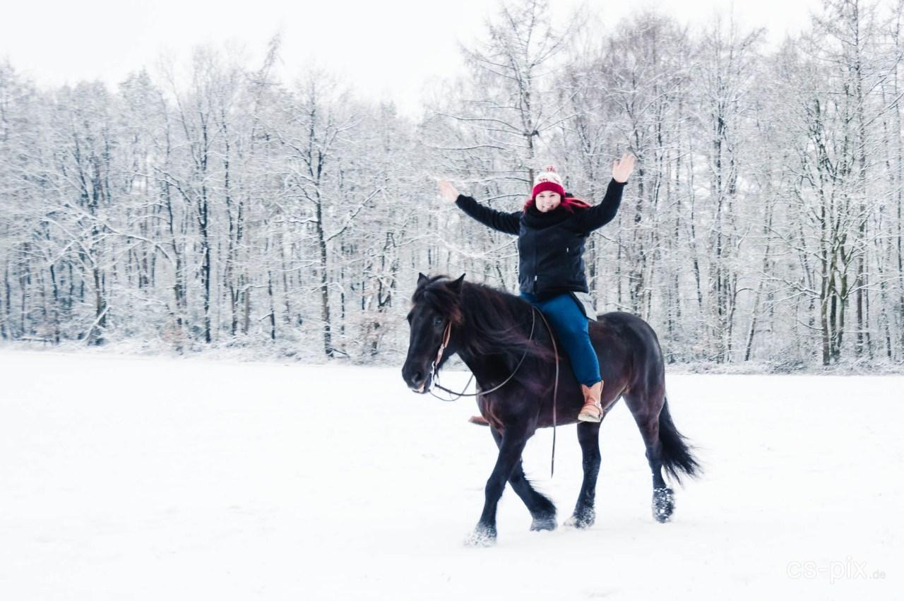 Nina und Spirit im Schnee III