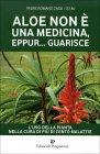 Aloe Non È una Medicina Eppur Guarisce Padre Romano Zago