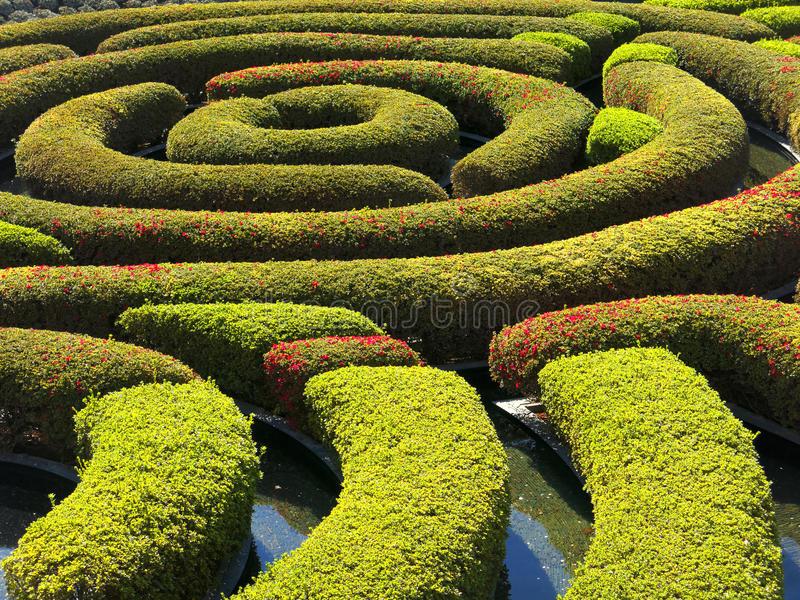 garden-maze