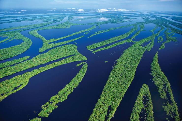 Amazon+River+in+Brazil