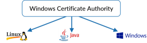 Public Key Infrastructure (PKI) for Windows Certificate Authority