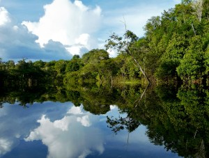 Amazon River Reflections, Brazil - Source: Si, Jay. Amazon River Reflections, Brazil. Digital Image. Shutterstock, [Date Published Unknown]