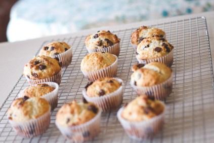 muffins-28