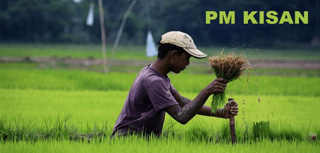 PM Kisan Scheme पर लगी रोक हटा दी जाएगी , इस महीने, PM Kisan Help Line, Updated