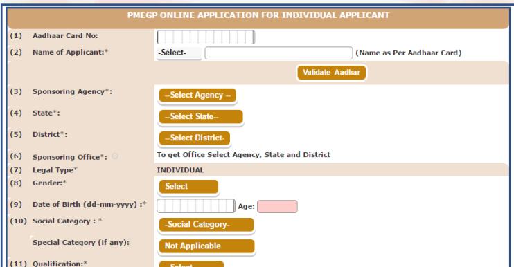PMEGP Individual apply
