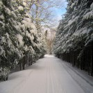 Ski Trail by Maxim