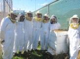 Beekeepers!