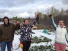 Steve, Linnea, and Chloe show off the rutabagas they harvested from the frozen soil!