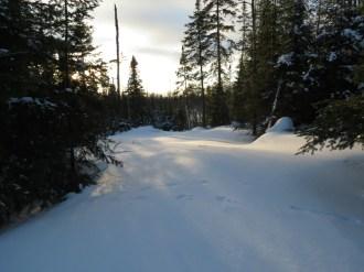 Shadows on the Black Trail ~ Nate Martineau