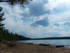 Loon Lake Landscape