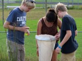 Matthew, Lucy and Jeremy marking grass hoppers