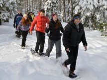 14-11-15 Snowshoe Ruby Kieran Will