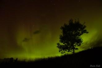 15-08-07 Northern Lights Eide 01