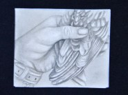 16-03-02 Drawn to Nature Hand with Bird Wing