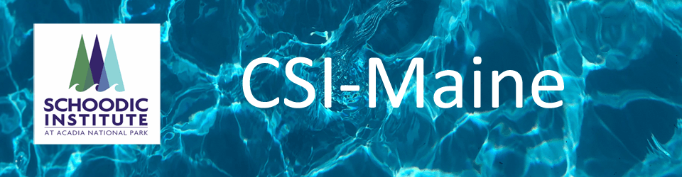 CSI Water Banner