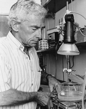 Figure 4. Dr MD (Hal) Hatch, FAA, FRS, co-discoverer of C4 photosynthesis. Source: http://plantsinaction.science.uq.edu.au/content/feature-essay-21-discovery-c4-photosynthesis.