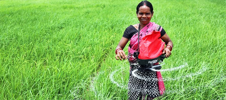 Image result for indian small farmer