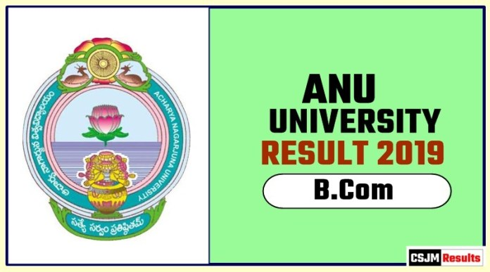 ANU BCom 1st 2nd 3rd Year Result 2019