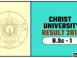 Christ University BSc 1st Year Result 2019