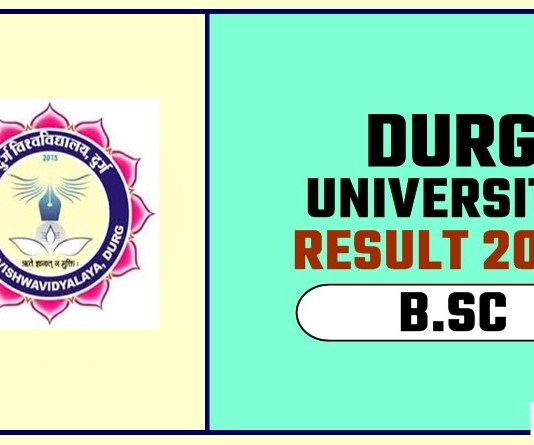 Durg University BSC 1st 2nd 3rd Year Result 2019