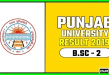 PUCHD BSC 2nd Year Result 2019 Pujab University